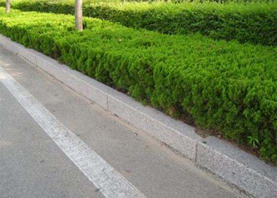 武汉路沿石